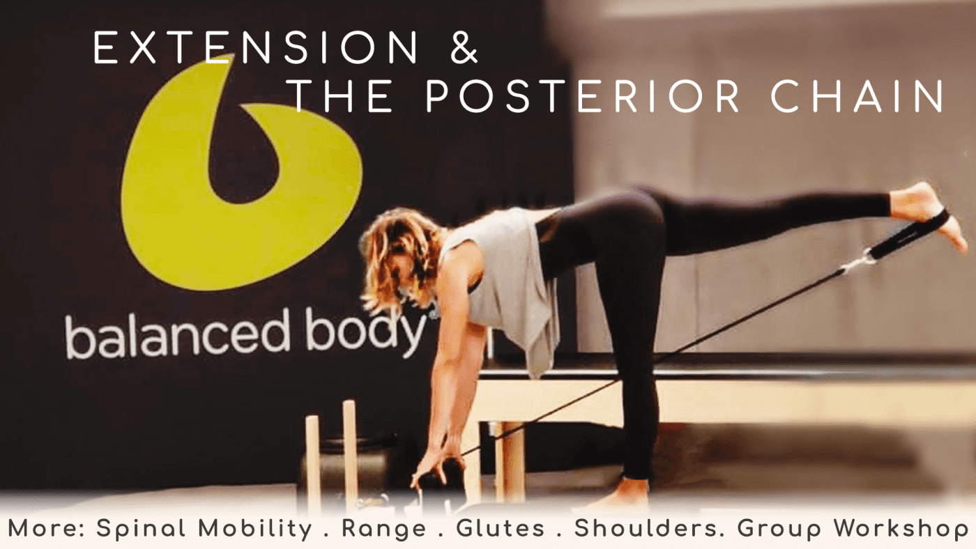 Extension & Posterior Chain – Individual WORKSHOP BLOCK