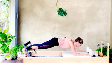 Day 19: Push ups, Pull ups workout, Monkeying Around on the Reformer with Gone Adventuring