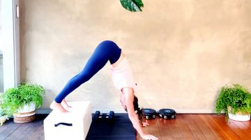 Day 26: Best Plank Upper Body workout for women at home by Gone Adventuring