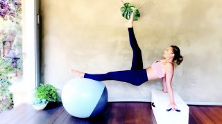 Arms & Abs Fitball Fierce Workout by Gone Adventuring